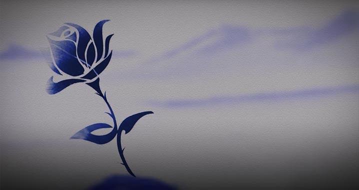 Philosophy of NEXA Blue